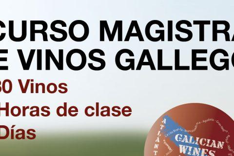 I CURSO MAGISTRAL DE VINOS GALLEGOS