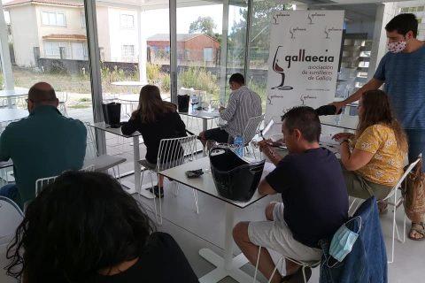 CATA FINAL DE LAS DISTINCIONES GALLAECIA 2020