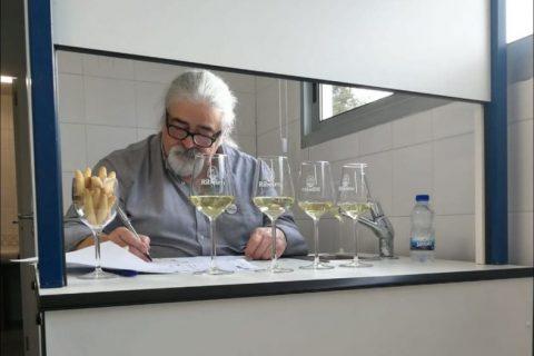 """""""FILLAS D.O. RIBEIRO 2021-2022"""""""